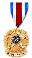 ARTIFACTS_medal of valor